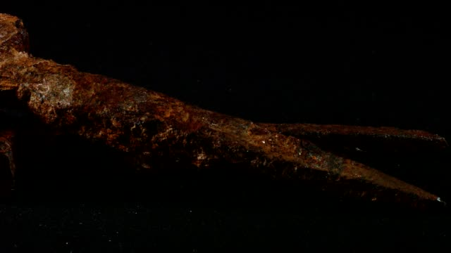 Macro dolly: old, forged, rusty nails on black background