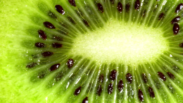 macro dolly: raw kiwi - kiwi fruit stock videos and b-roll footage