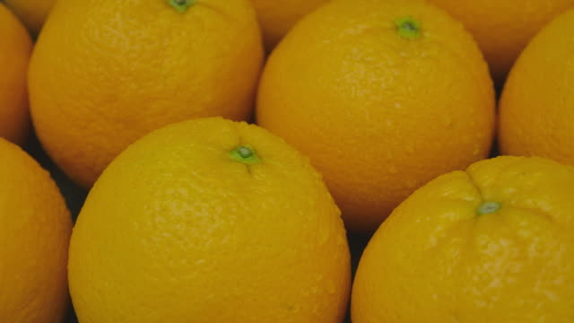 macro dolly shot of close-up shiny, orange fruit with water dew - ascorbic acid stock videos & royalty-free footage