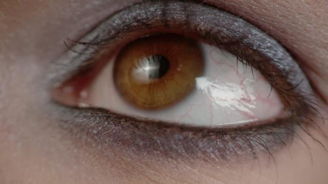 vídeos y material grabado en eventos de stock de macro eye - sombreador de ojos