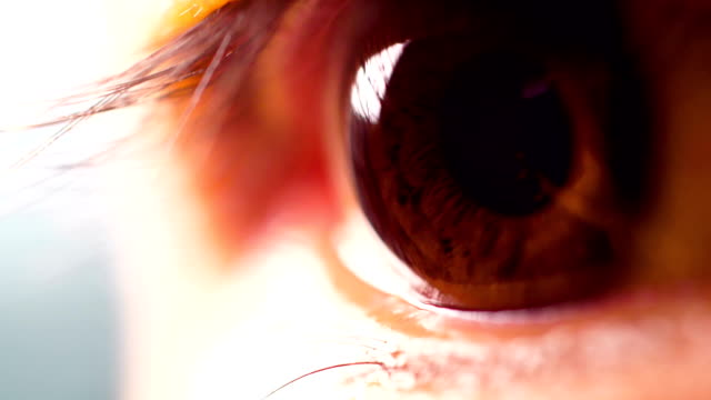 macro human eye - eyelid stock videos and b-roll footage