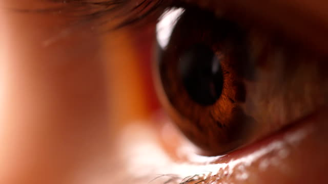 macro human eye - brown stock videos & royalty-free footage