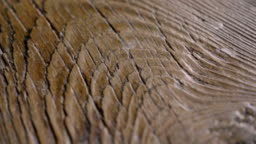 Macro shot of a precious wood in which you can see the color, the wood grain, the knots and the high quality workmanship.