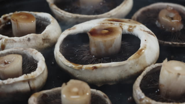 macro shot of mushrooms cooking in a frying pan. - still life stock videos & royalty-free footage