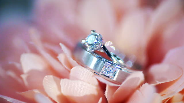 macro shot of wedding rings in pink flower. wedding theme. - ring stock videos and b-roll footage
