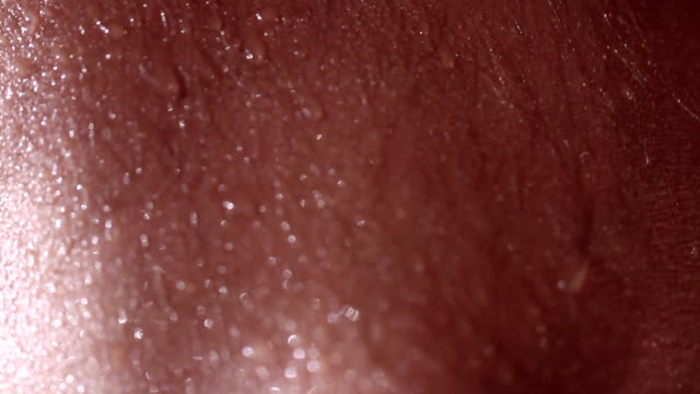 macro sweaty skin - sweat stock videos & royalty-free footage