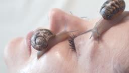 macro video shot of of snails on a female face. Snail Slime rejuvenates the skin