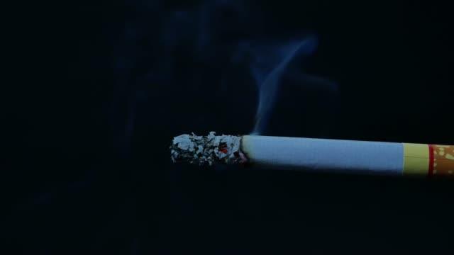vídeos de stock e filmes b-roll de macro view of burning cigarette with smoke on black - smoke physical structure