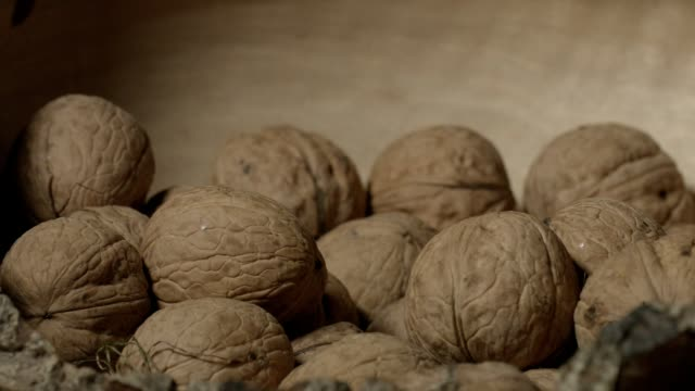 macro-dolly: walnuts in wooden bowl - nutshell stock videos and b-roll footage