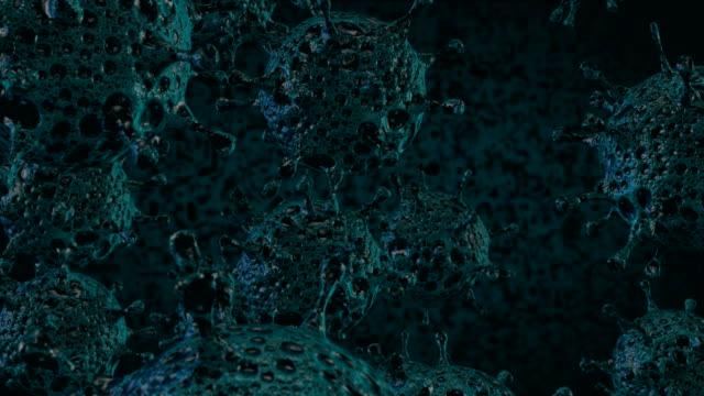 macrophage and virus - macrophage stock videos & royalty-free footage