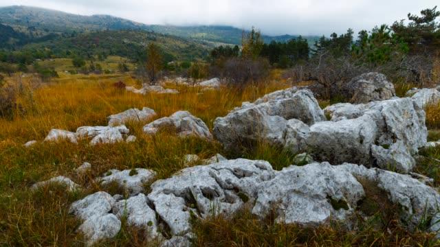 vídeos y material grabado en eventos de stock de macun forest in autumn - eslovenia