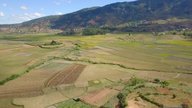 マダガスカル高原村とライス フィールド ドローン ビュー - マダガスカル点の映像素材/bロール