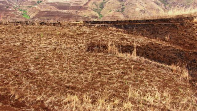 madagascar: paddy terraces - マダガスカル点の映像素材/bロール