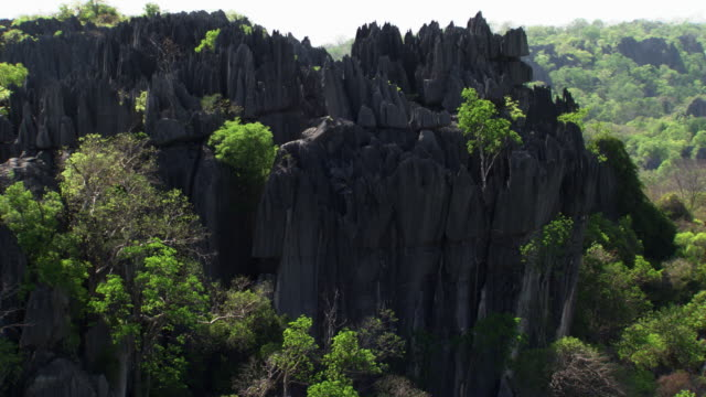 Madagascar : Rocks and vegetation of Tsigny of Bemaraha