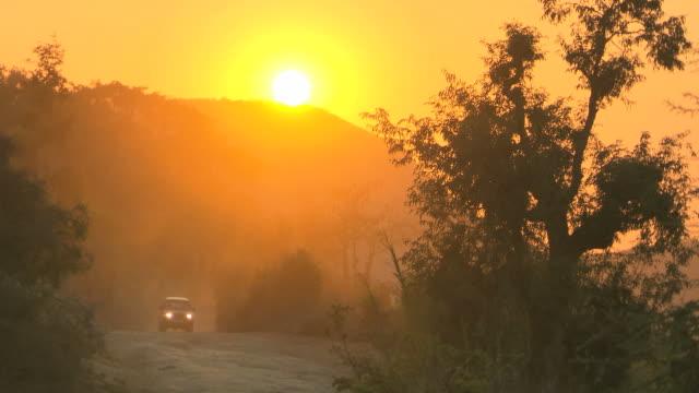madagaskar sonnenuntergang über wald. hq 4:2: 2 - autoscheinwerfer stock-videos und b-roll-filmmaterial