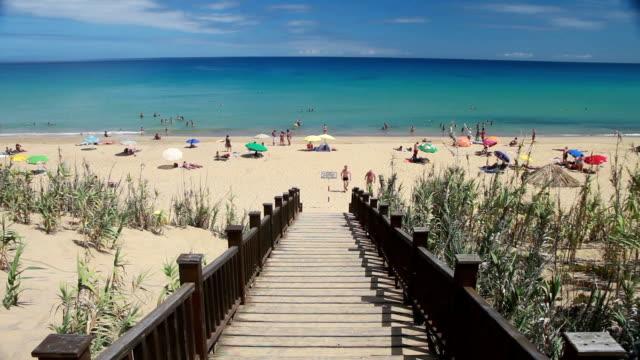 madeira porto santo praia - madeira stock videos and b-roll footage