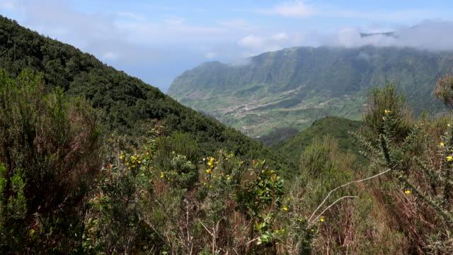 vídeos de stock, filmes e b-roll de madeira view of deep valley - ilhas do oceano atlântico