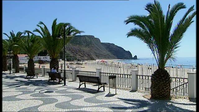 madeleine mccann abduction: description of suspect; beach including promenade and palm trees - vermißte person stock-videos und b-roll-filmmaterial