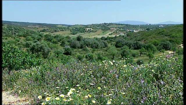 madeleine mccann abduction: police criticised; portugal: algarve: lagos: ext flowers on hills in green rolling countryside tree branches with craggy... - algarve stock-videos und b-roll-filmmaterial