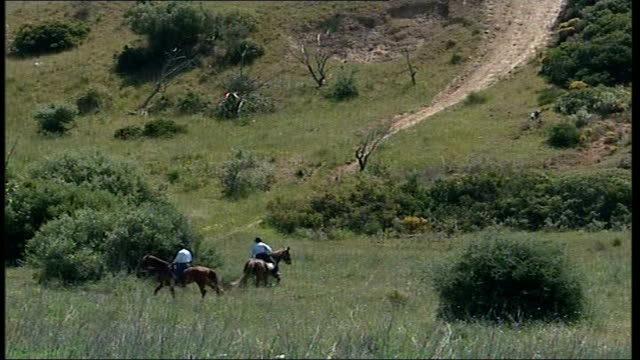madeleine mccann abduction: police criticised; portugal: algarve: praia da luz: ext police officers searching field on horseback police officers in... - searching点の映像素材/bロール
