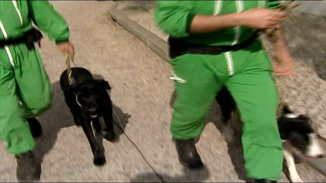 vidéos et rushes de family return to uk tx may 2007 portugal algarve ext police in green overalls with sniffer dogs - salopette