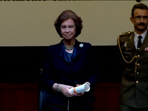 madrid 7 march spanish queen sofia presented the vii queen sofia international cultural heritage conservation and restoration awards at the casa de... - vermelho stock videos and b-roll footage