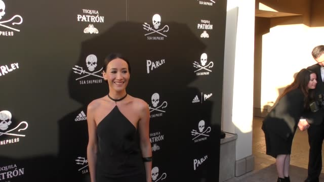 maggie q at the sea shepherd conservation society's 40th anniversary gala for the oceans at montage beverly hills on june 10, 2017 in beverly hills,... - モンタージュ・ビバリーヒルズ点の映像素材/bロール