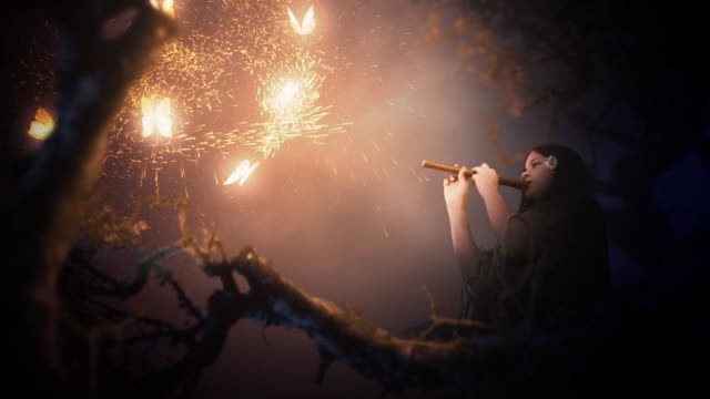 magic scenes. girl playing flute and glowing butterflies. fantasy series. - historia bildbanksvideor och videomaterial från bakom kulisserna