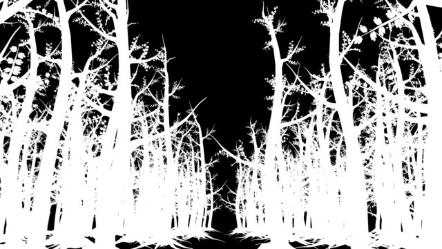 vídeos y material grabado en eventos de stock de bosque mágico silhouette mate - mate técnica de vídeo