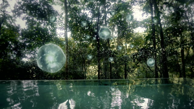 magical rainforest. infinity pool with floating plasma bubbles - infinity pool stock videos & royalty-free footage