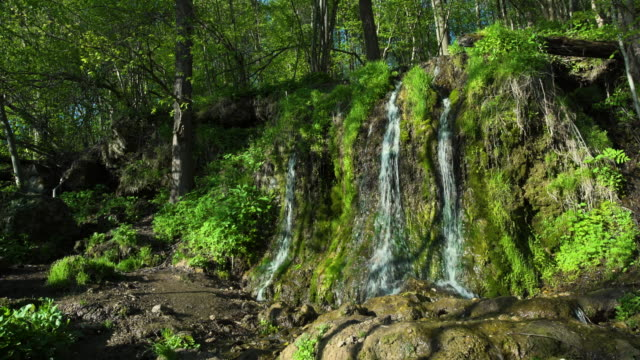 magical stream in the heart of the forest - spring flowing water stock videos & royalty-free footage