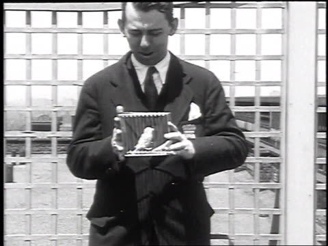 1930 montage magician making bird and cage disappear, june 4, 1930 / chicago, illinois - illusion stock videos & royalty-free footage