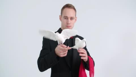 vídeos de stock, filmes e b-roll de mágico com pombas - truque de mágica