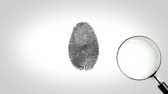 Magnifity Glas Suche Fingerabdruck