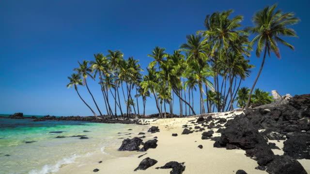 mahai'ula beach kekaha kai state park big island hawaii - ハワイ島点の映像素材/bロール
