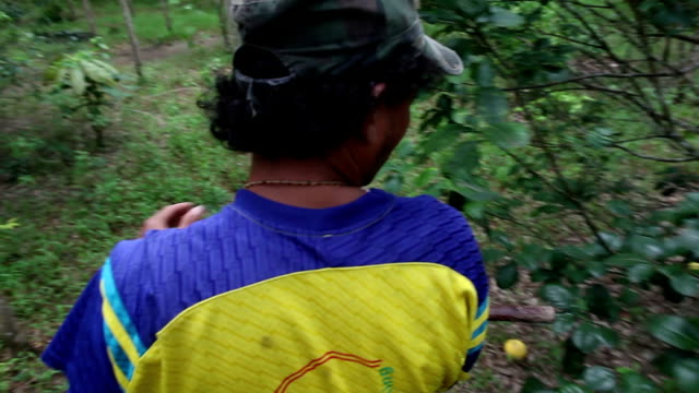 vídeos y material grabado en eventos de stock de mahout on the back of an elephant in the jungle. - gorra de béisbol