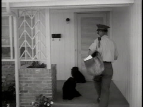 a mail carrier pets a dog sitting on a porch and drops mail in a mailbox - gabbietta per animali video stock e b–roll