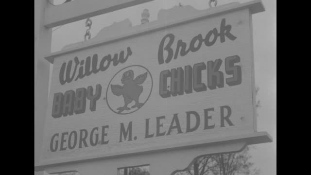 Mailbox Geo M Leader Willowbrook Farm George M Leader Dover R D 2 / hanging sign Willow Brook Baby Chicks George M Leader / Leader and wife Mary Jane...