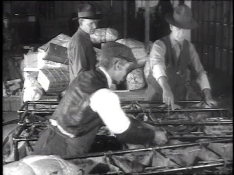 ms mailmen sorting packages / camp sherman chillicothe ohio united states - 1918 stock videos and b-roll footage