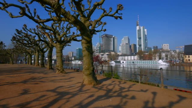 Main river shore with skyline and Commerzbank Tower, Frankfurt am Main, Hesse, Germany