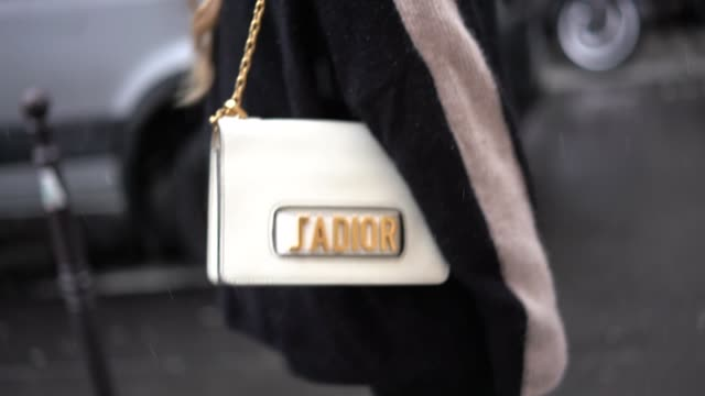 maja malnar wears a dior bag, outside valentino, during paris fashion week - haute couture spring summer 2020, on january 23, 2019 in paris, france. - valentino designer label stock videos & royalty-free footage