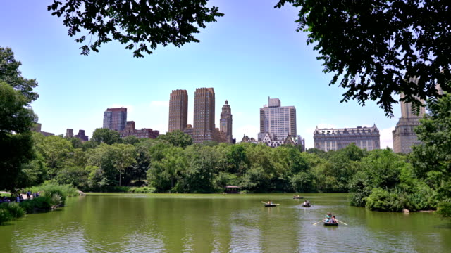 majestic apartments, apartment complex view from the lake, central park, people enjoying sunny day, rowing boat - majestic stock videos & royalty-free footage
