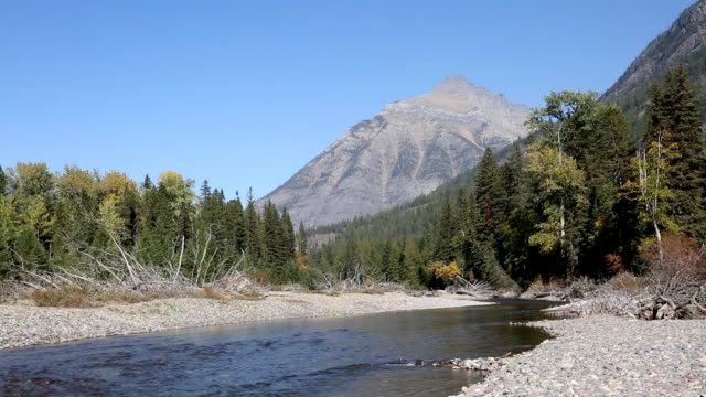 majestic mountain river - glacier national park us stock videos and b-roll footage