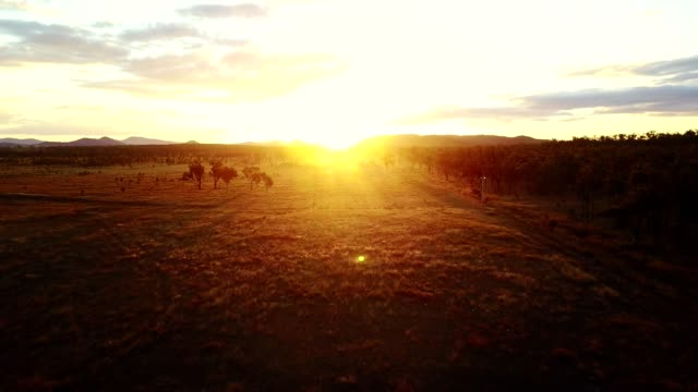 majestic sunset in australia outback - farm stock videos & royalty-free footage