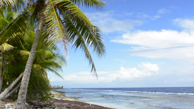 Majuro Marshall Islands beach with palm trees and ocean romantic scene