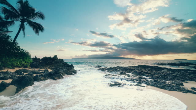makena beach makena cove sunset - riva dell'acqua video stock e b–roll
