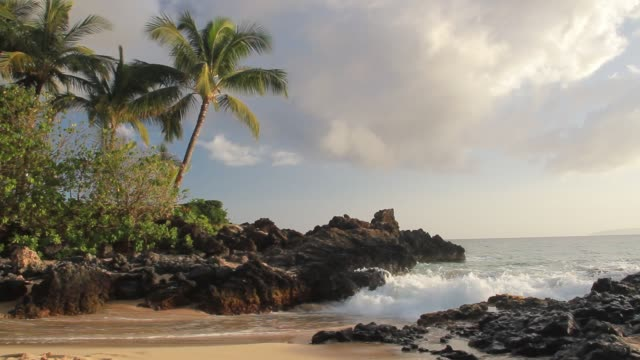 makena cove - 47959b - kauai stock videos & royalty-free footage