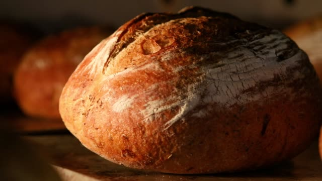 making bread in bakery - pane a lievito naturale video stock e b–roll