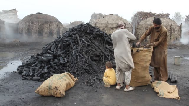 making charcoal (wood coal) - industrie ofen stock-videos und b-roll-filmmaterial