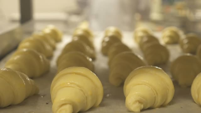 making croissant - bakery stock videos and b-roll footage